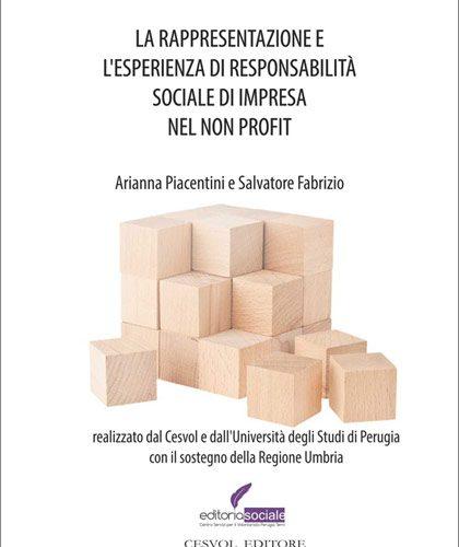 La rappresentazione e l'esperienza di responsabilità sociale d'impresa nel non profit