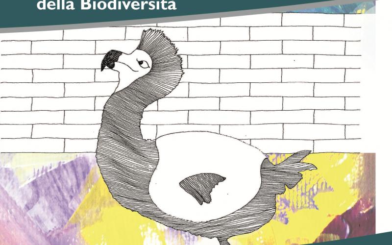 Il giardino delle Biodiversità / Ass. Utilità Manifesta