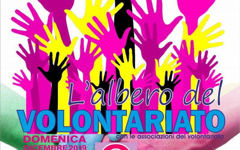 """""""ALBERO DEL VOLONTARIATO"""" – DOMENICA 8 DICEMBRE A CITTA' DI CASTELLO  – PRESENTI ASSOCIAZIONI DI 5 COMUNI – OLTRE AGLI STAND, TANTE INIZIATIVE COLLATERALI"""