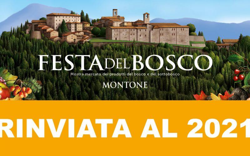 """""""FESTA DEL BOSCO"""", ANNULLATA L'EDIZIONE 2020"""