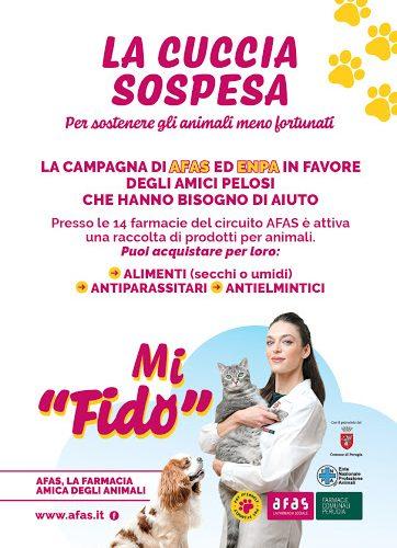 """Iniziativa solidale """"La Cuccia Sospesa"""", AFAS Perugia. Come donare alimenti e medicinali agli amici a quattro zampe meno fortunati, nel territorio locale"""