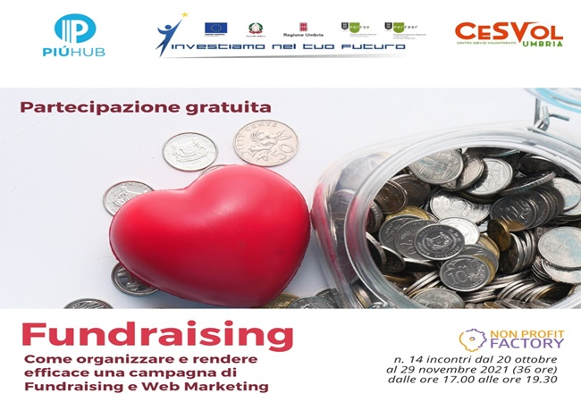 𝗖𝗼𝗺𝗲 𝗼𝗿𝗴𝗮𝗻𝗶𝘇𝘇𝗮𝗿𝗲 𝗲 𝗿𝗲𝗻𝗱𝗲𝗿𝗲 𝗲𝗳𝗳𝗶𝗰𝗮𝗰𝗲 𝘂𝗻𝗮 𝗰𝗮𝗺𝗽𝗮𝗴𝗻𝗮 𝗱𝗶  Fundraising e web marketing